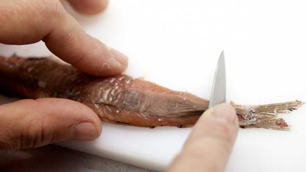 Corte de las anchoas en conservas nardín
