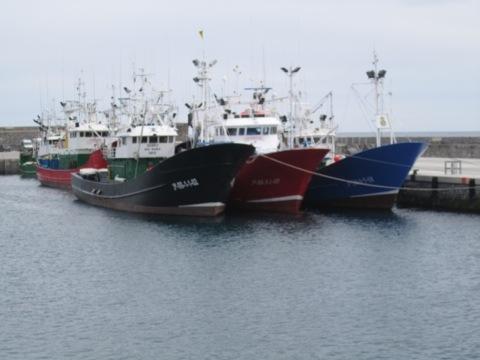barcos de pesca en el puerto de Getaria