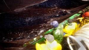 pescadores en el mar, guetaria, país vasco