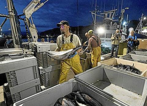 del-barco-al-plato-con-un-cuidado-especial-nardin