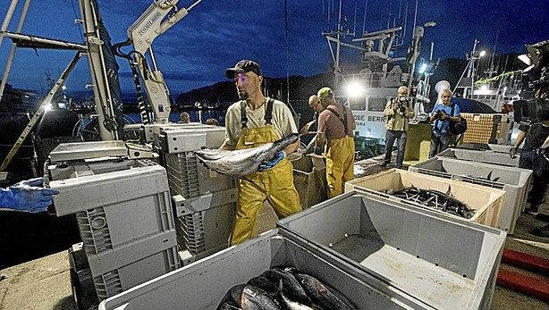 Del mar al plato con un cuidado especial, conservas nardín